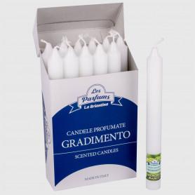 Candela Gradimento - Muschio Bianco