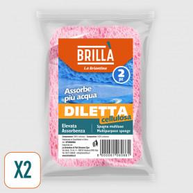 Spugna Diletta