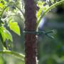 Filo di ferro gommato - 10 m