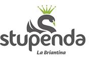 stupenda_logo.jpg